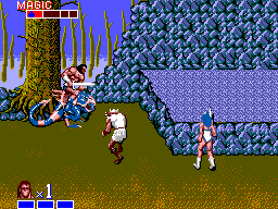 Other 8-Bit titles include Golden Axe Warrior on the Master System and